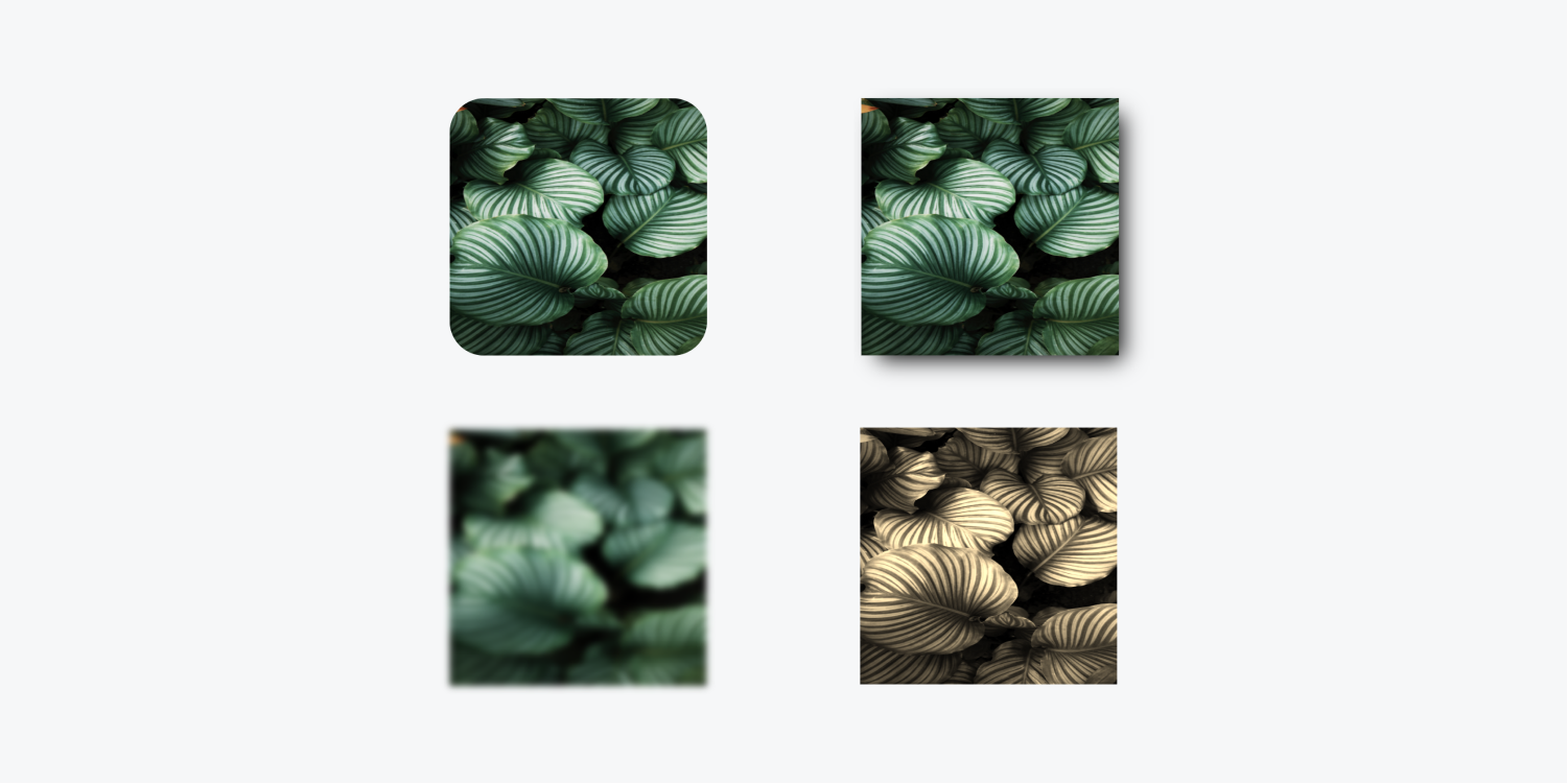 An image duplicated four times with style properties. An example of a border radius, drop shadow, blur and sepia filter properties.