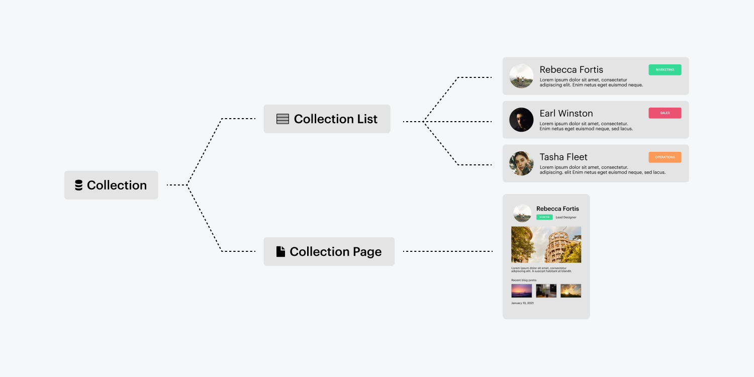 A diagram displays a dotted line connection from a Collection to both a Collection list and a Collection page. The Collection list branches off to three profile tab previews. The collection page branches off to a single profile card.