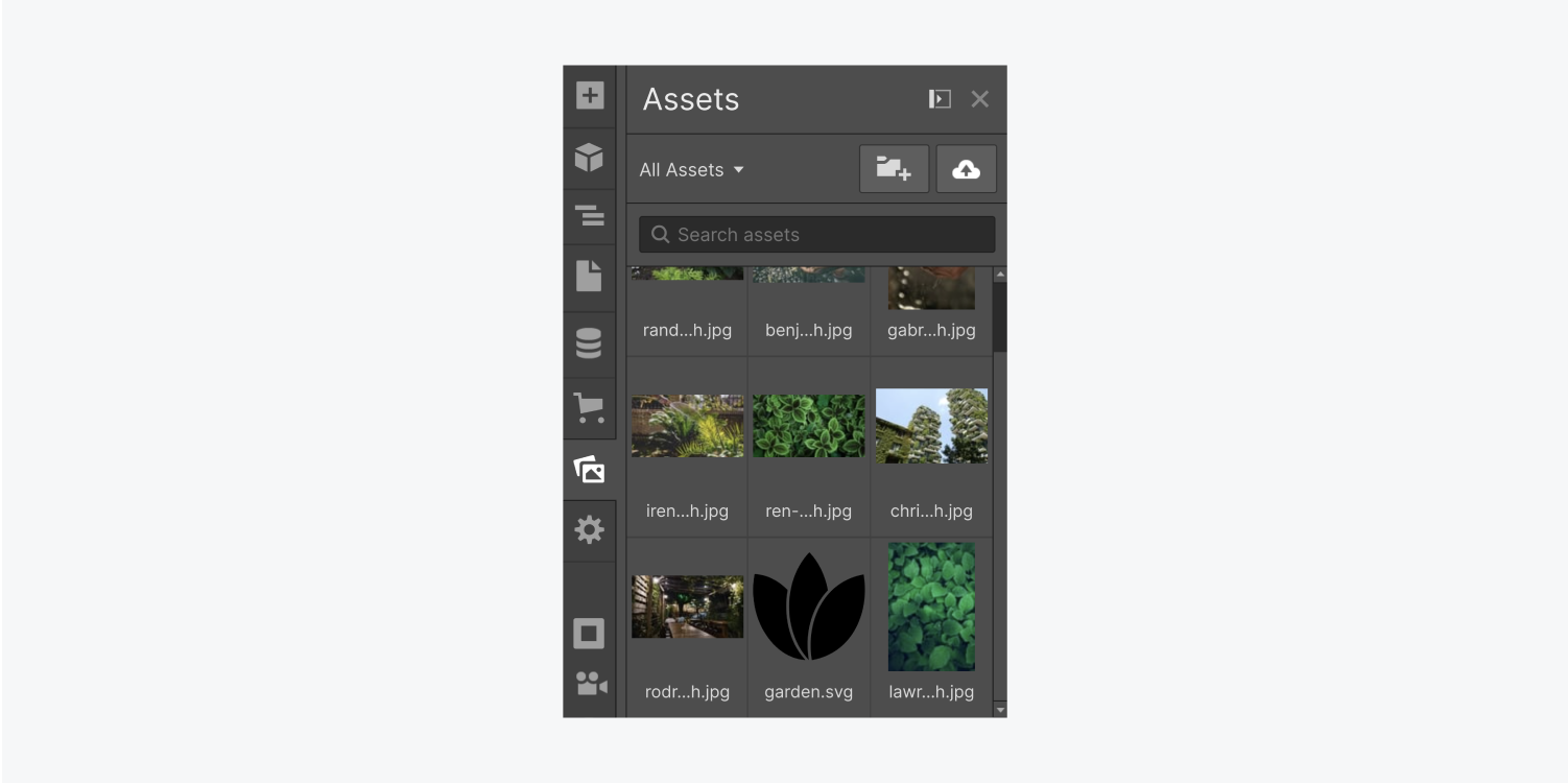 The Assets panel displays nine images of plants life scenes.