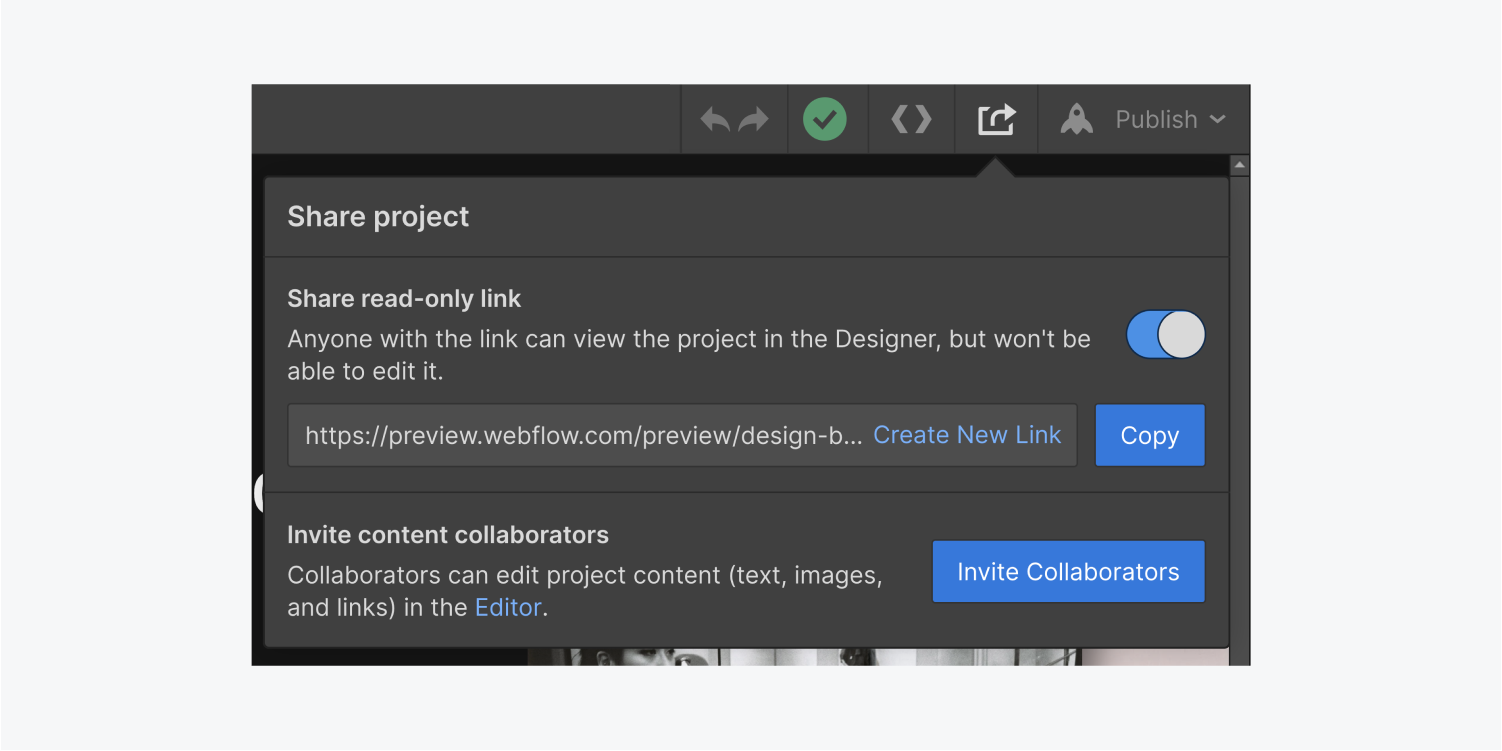 The share project dialog box is in view. There is a copy button to copy the share read-only link. Below the share read-only link section is the invite collaborators button in its own section.