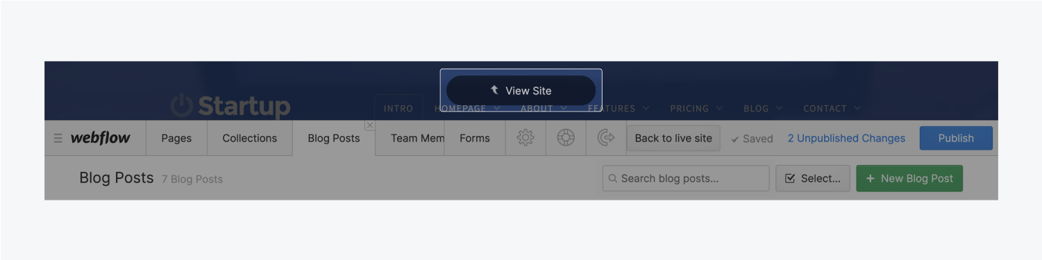 The View Site button is highlighted in its position above the editor tool bar.