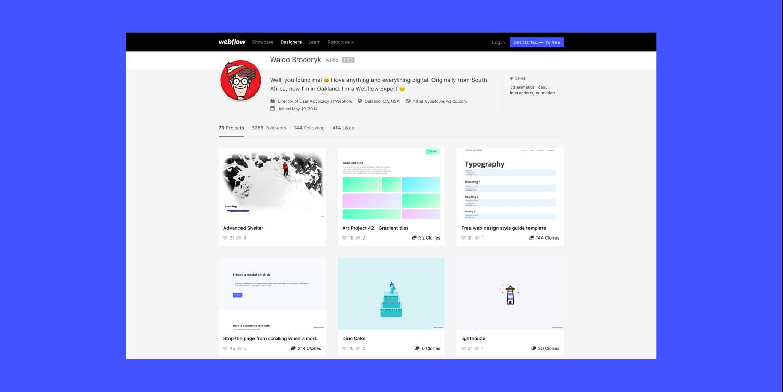 The public profile of user Waldo Broodrykis on a Webflow blue background.