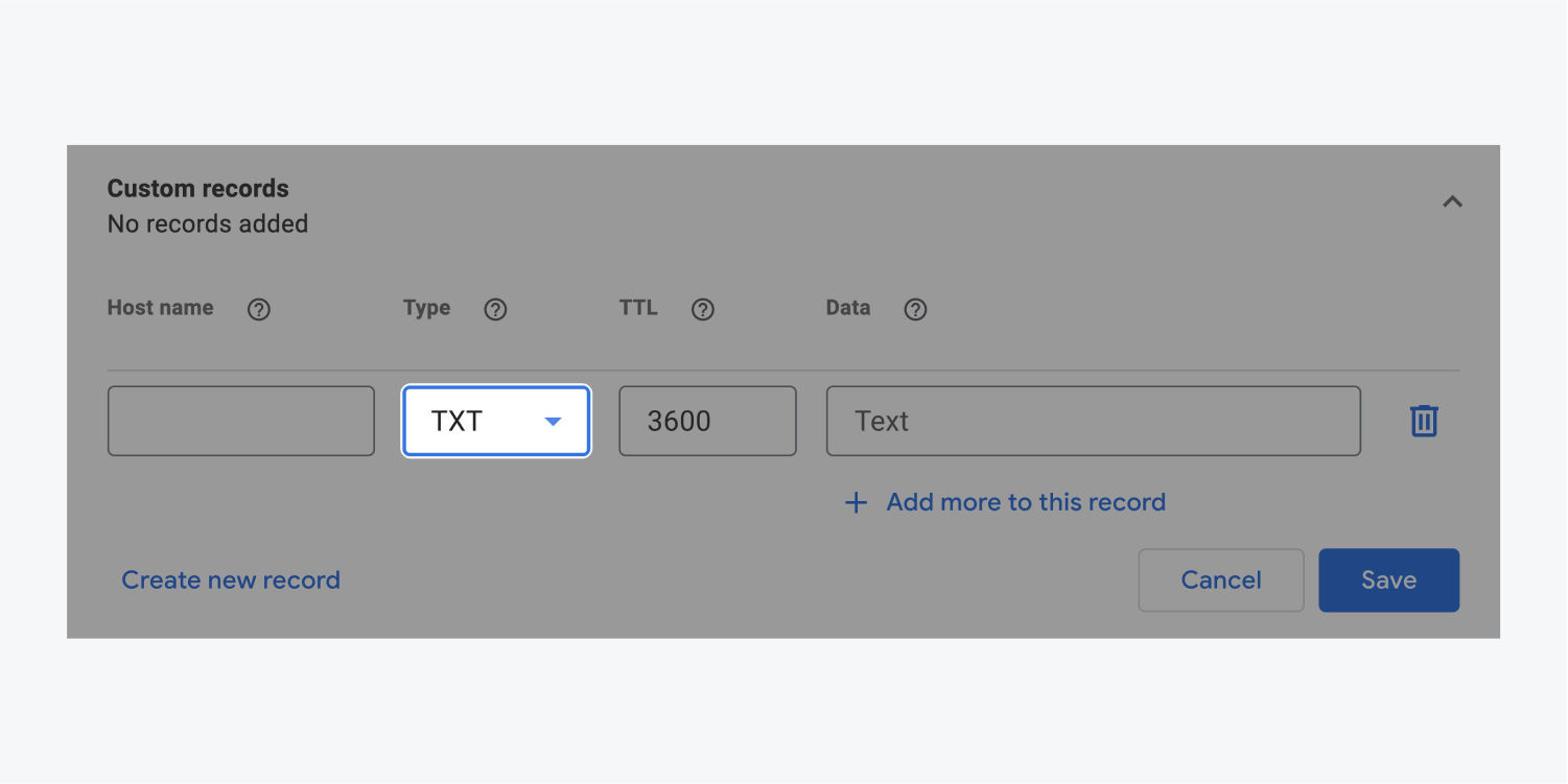 The TXT option in the type drop down menu is selected and highlighted within the Custom records section.