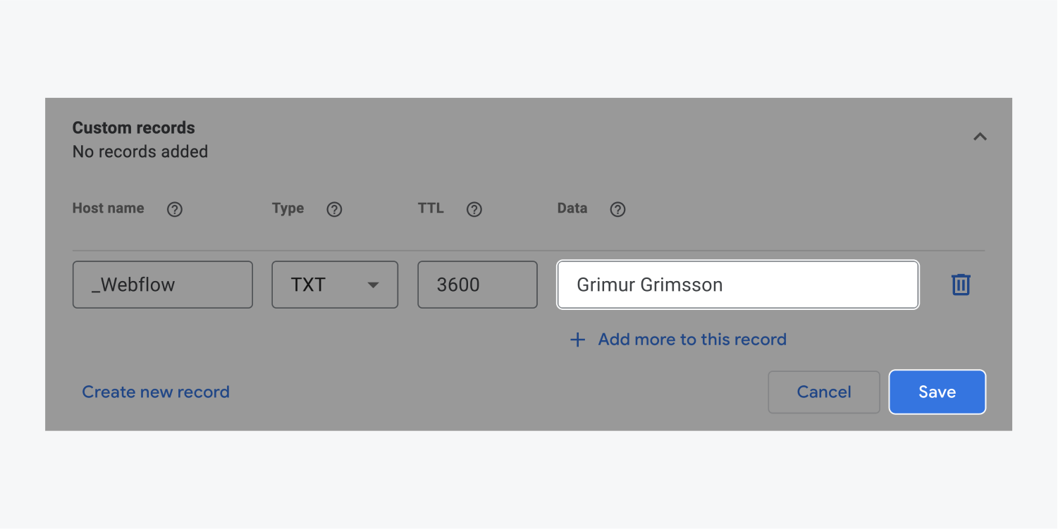 """Grimur Grimsson is entered in the value """"data"""" field and highlighted within the Custom records section. There is also a highlighted blue save button at the bottom right corner."""