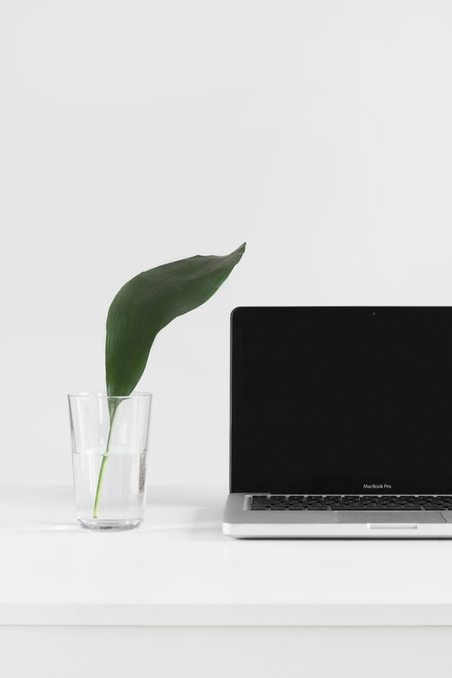 checking freelance websites on computer