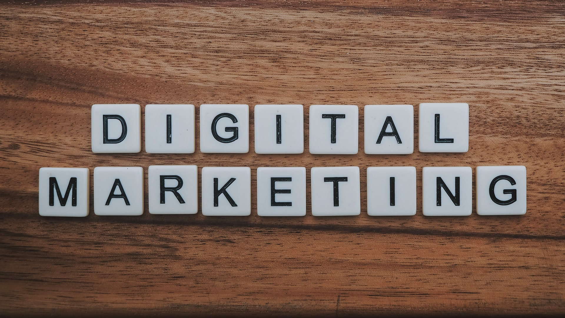 These are the building blocks for launching your freelance digital marketing career.