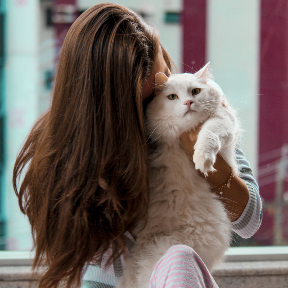 Female cat owner cuddling with white fluffy cat
