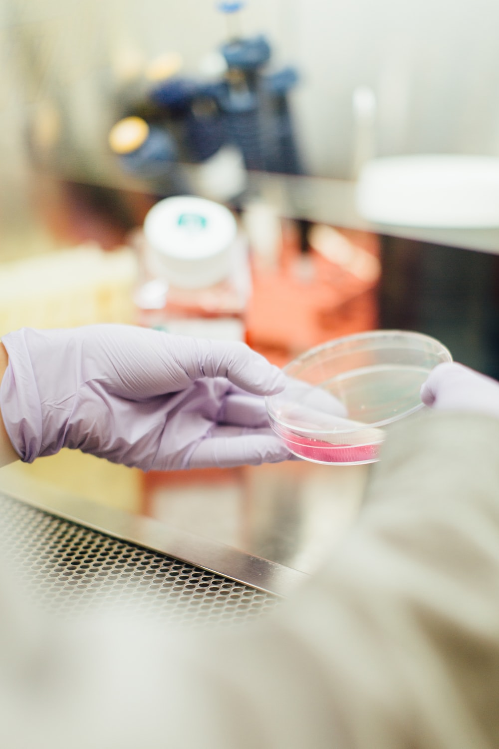 Person wearing latex gloves holding clear container in a food lab.