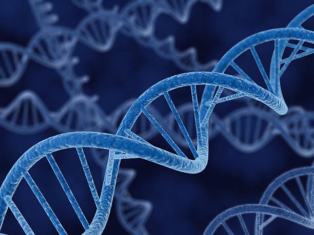 3d rendering of DNA Strands
