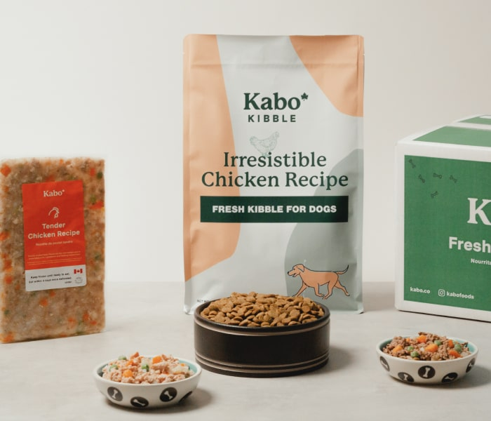Kabo gently cooked chicken recipe displayed next to bag of Kabo kibble with bowls of the chicken meal, kibble, and the beef meal