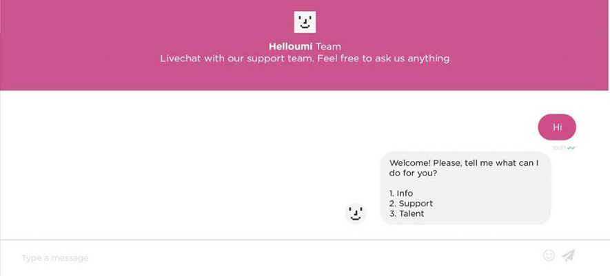 full-page chatbot