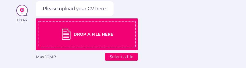 chatbot employment form