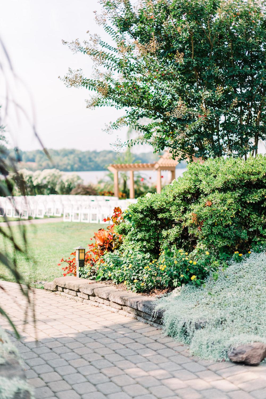 Garden at Polynesian Lawn