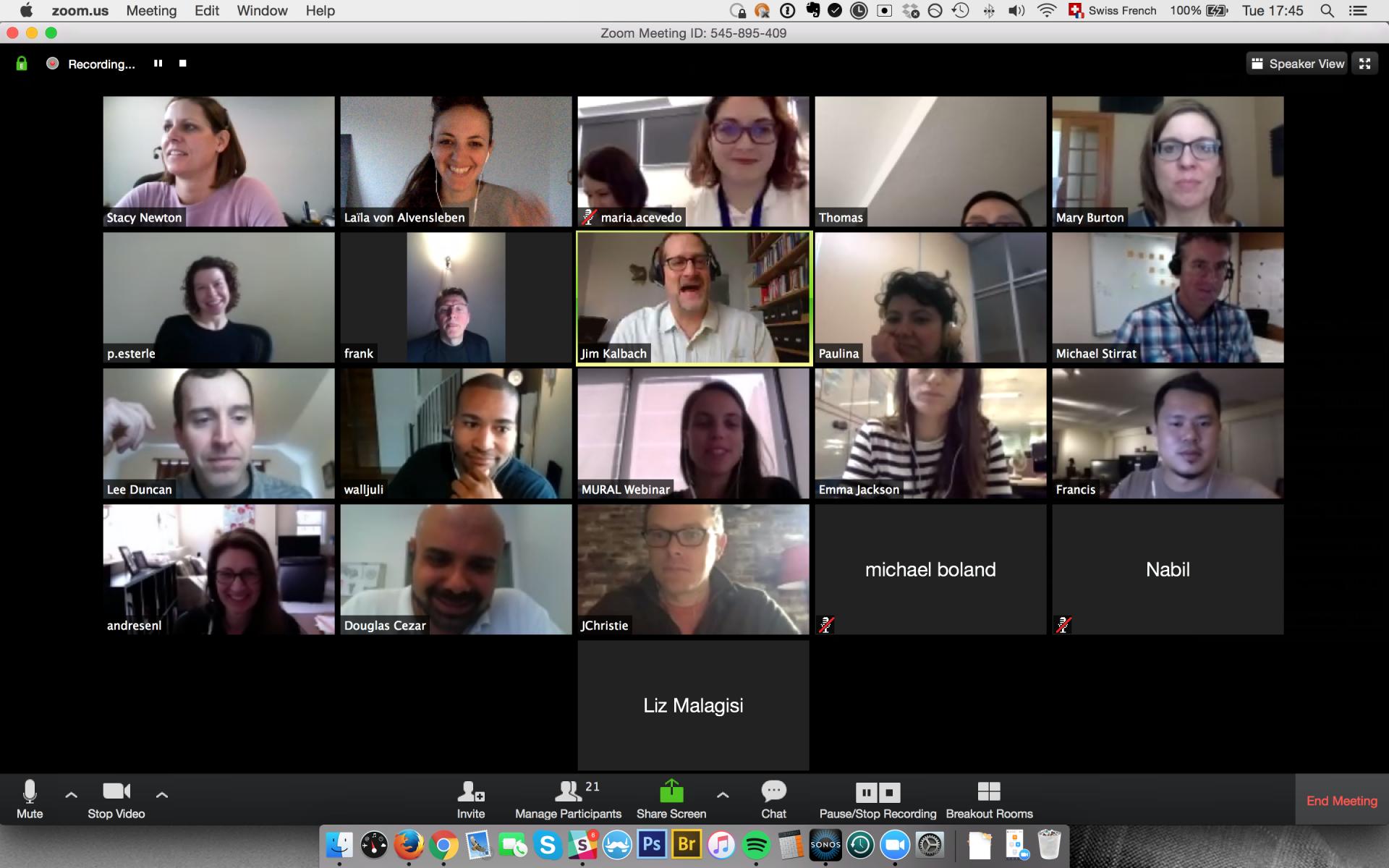 Remote Webinar Participants