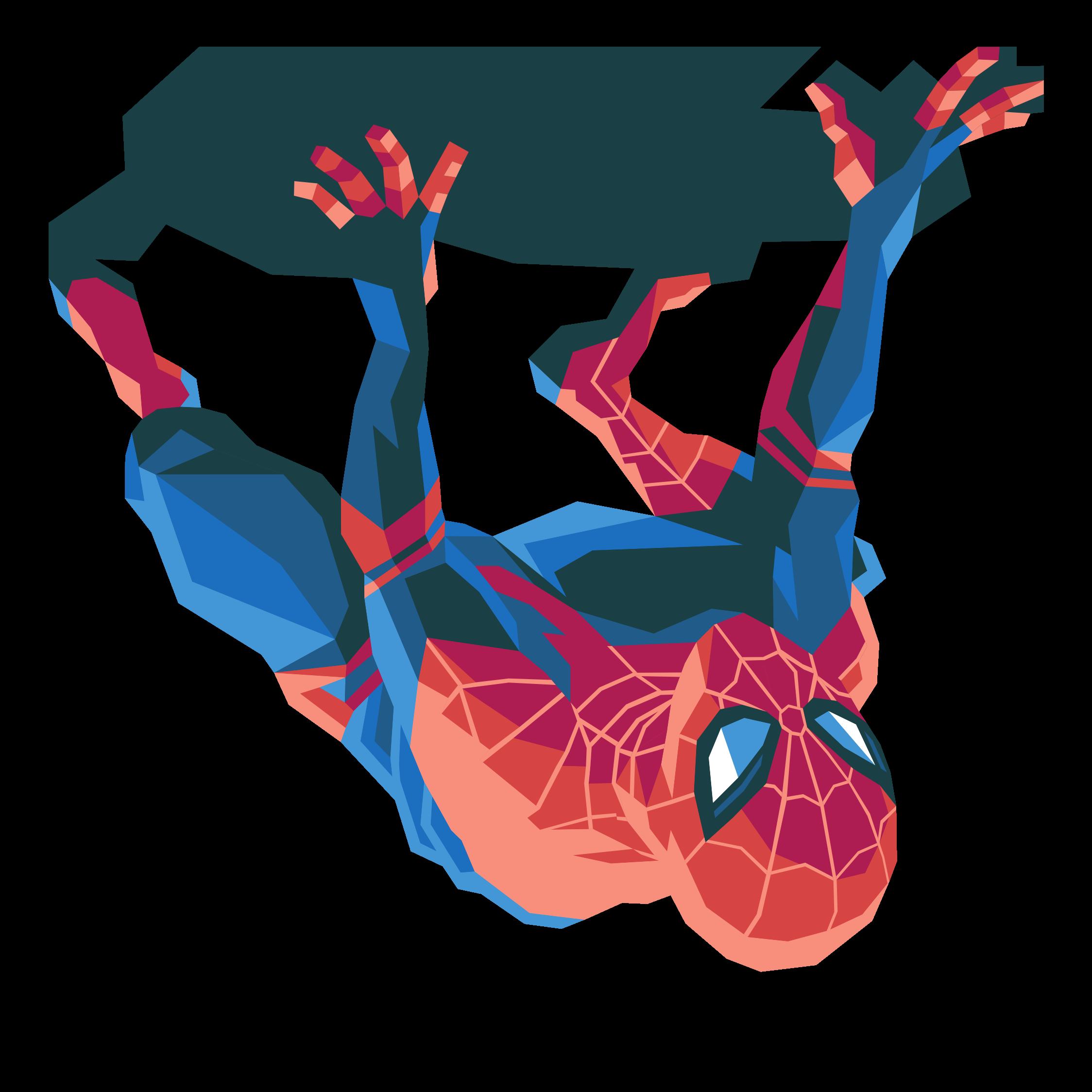 Spider Man designed by Liam Brazier in Vectornator