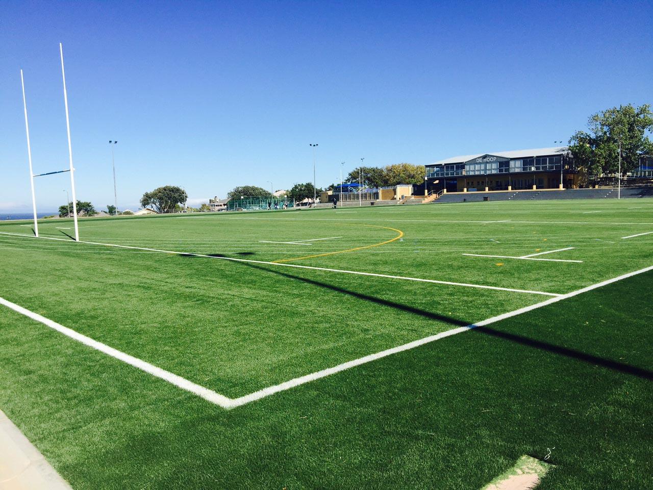 Artificial rugby pitch at Laerskool De Hoop  (1)