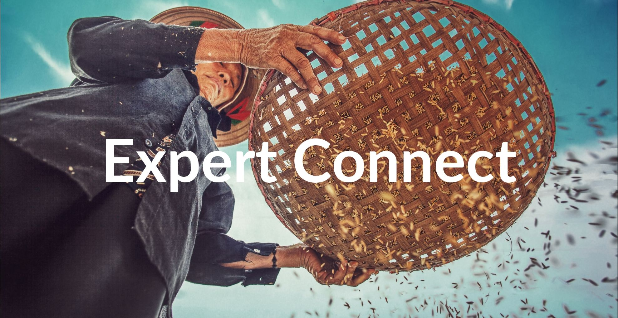Expert Connect - Indian Rice Export Insights with Rakesh Kumar Singh