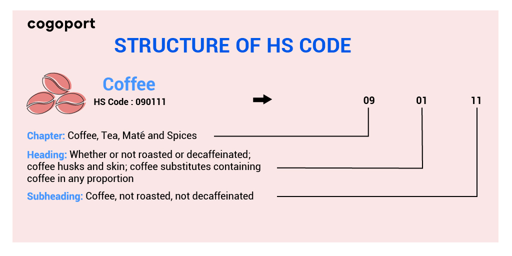 HS Code Structure
