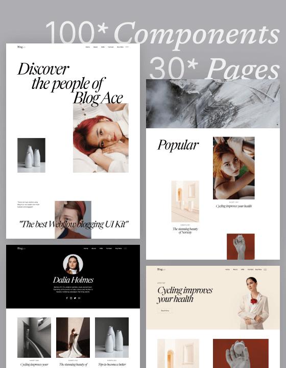 Blog Ace