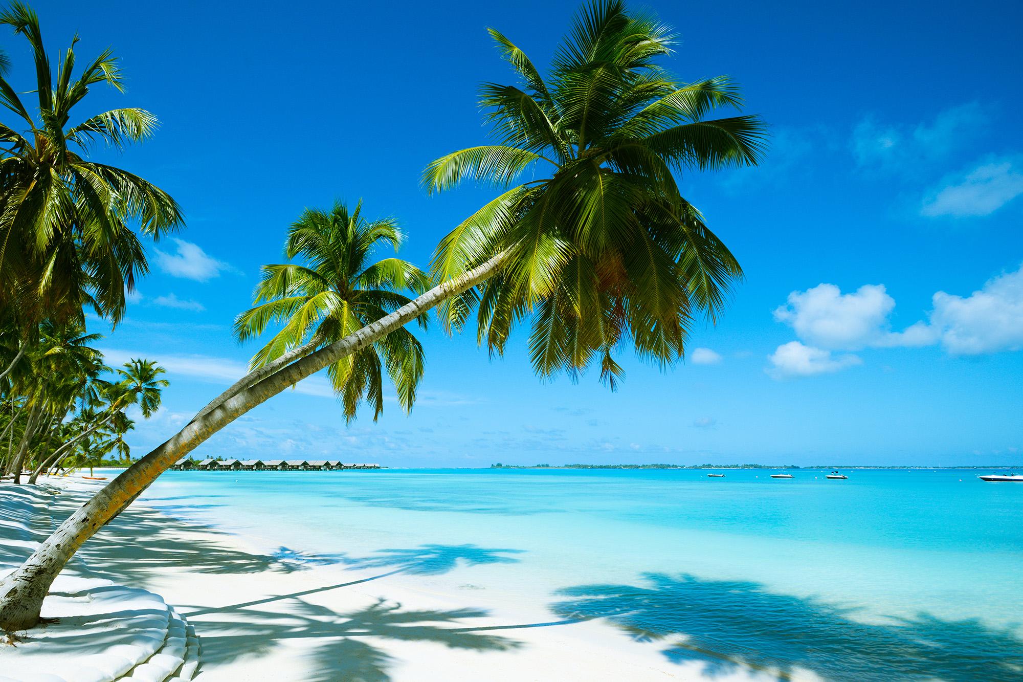 Beach Resort Bahamas