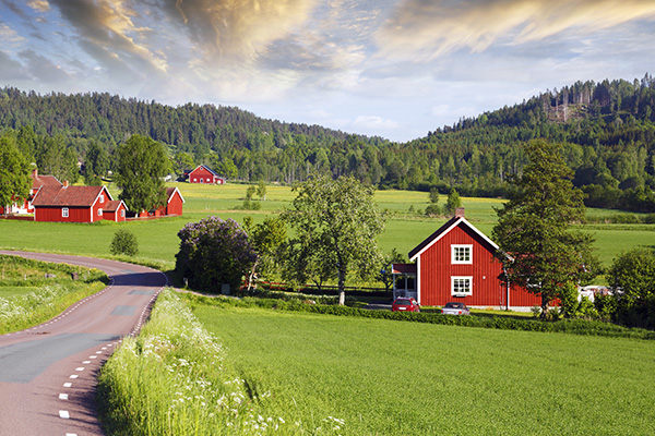 Old Red Farms