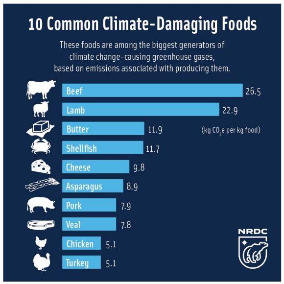 climate-damaging-foods.jpg