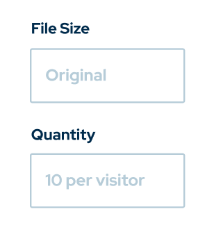 File size and quantity input from ShootProof's interface