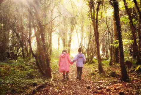 Photo of children walking together in a dreamy path
