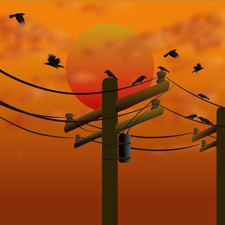 vector art crows sun electricity
