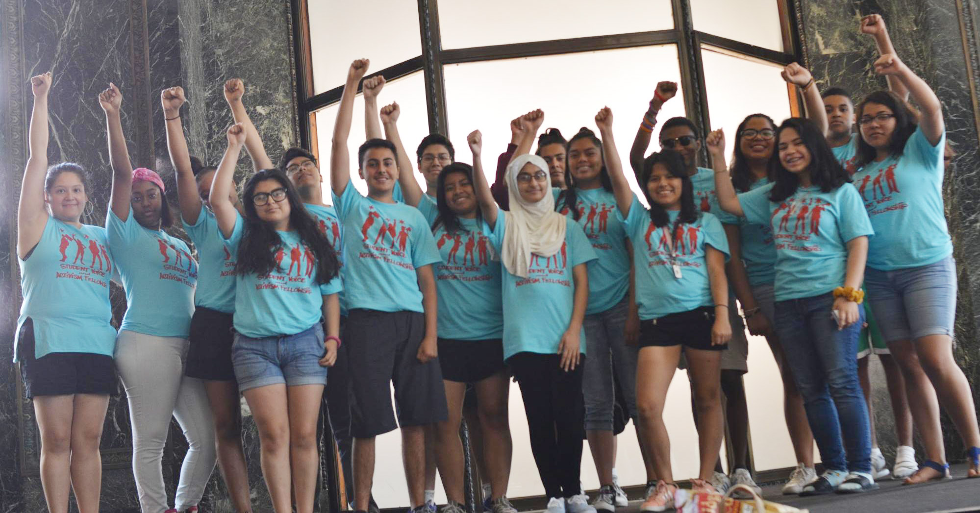 Student Voice and Activism Fellowship (SVAF)