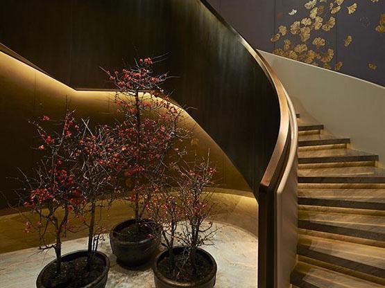 Smalto Luxury Oro, Private House.