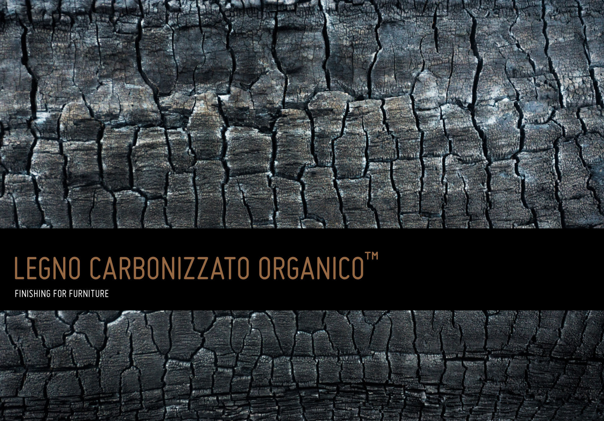 organic carbonized wood