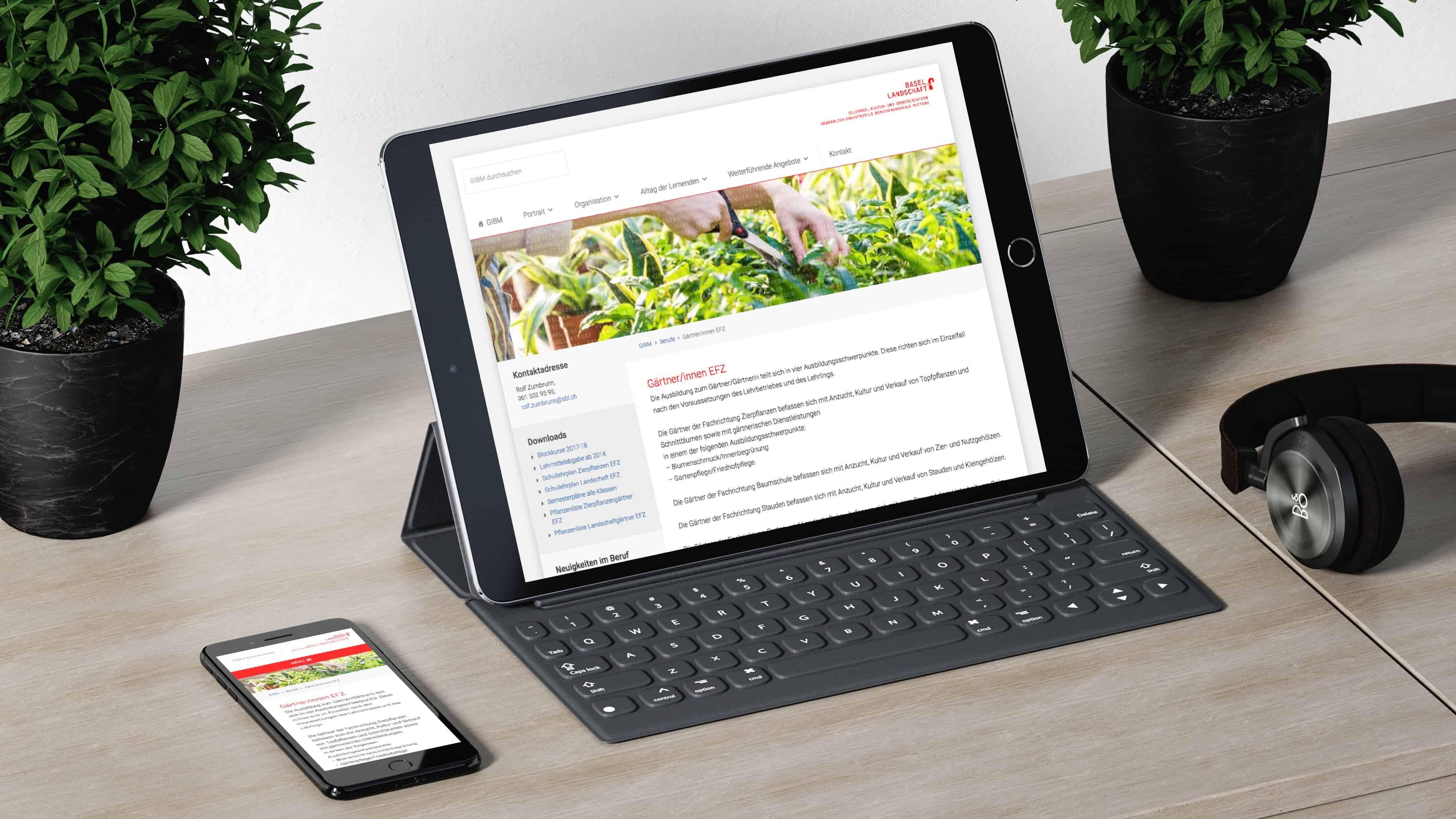 Conception de sites web et marketing en ligne