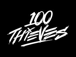 100 Thieves F&F