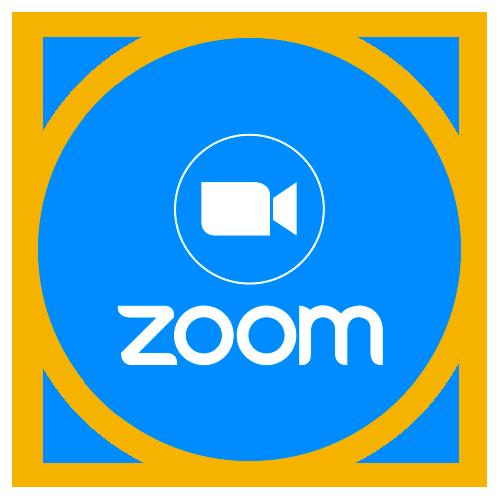 Eget Zoom-konto (PRO)