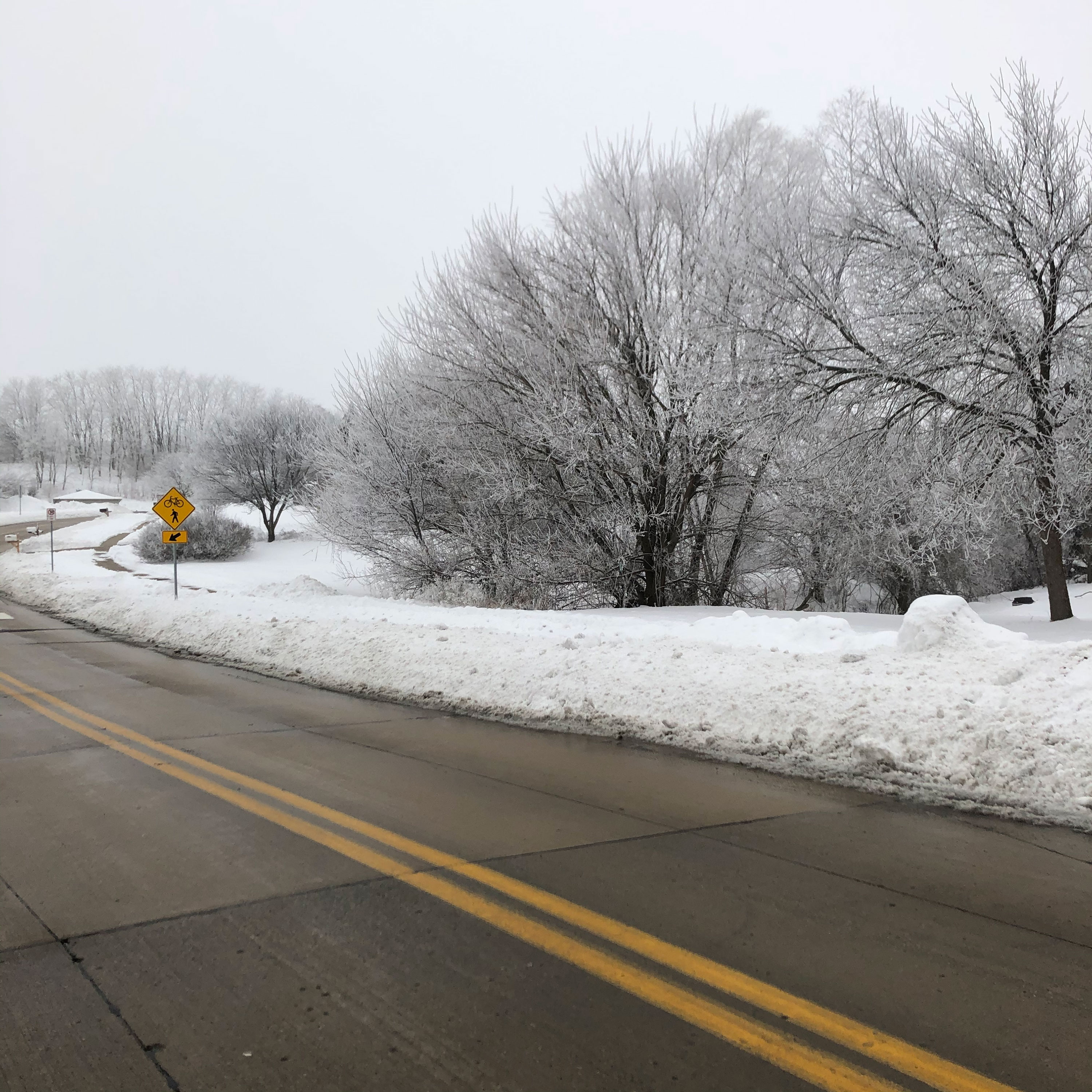 Road flanked by a snowy landscape and white sky above.