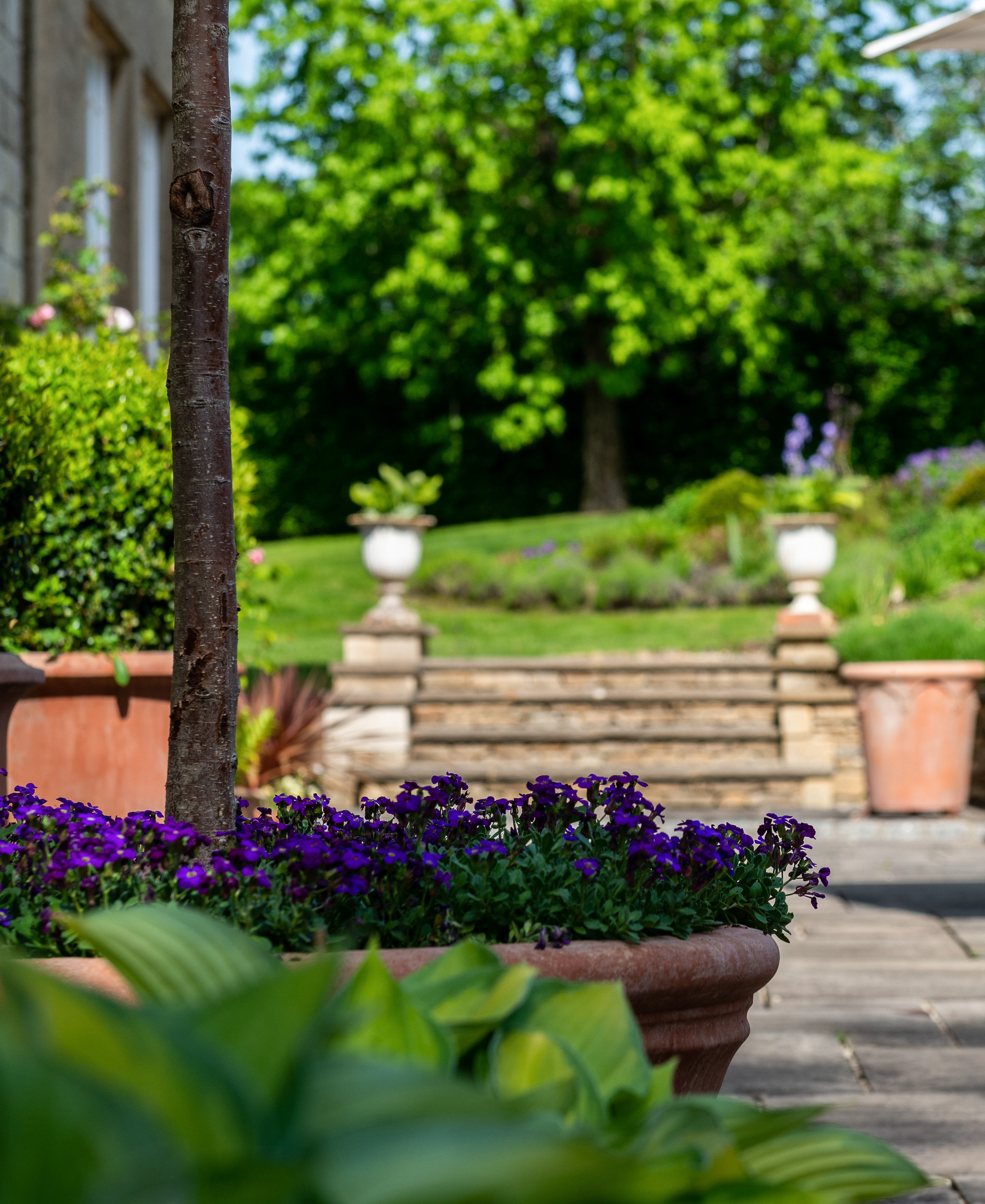 Country properties with regal gardens sold by The Country House Department