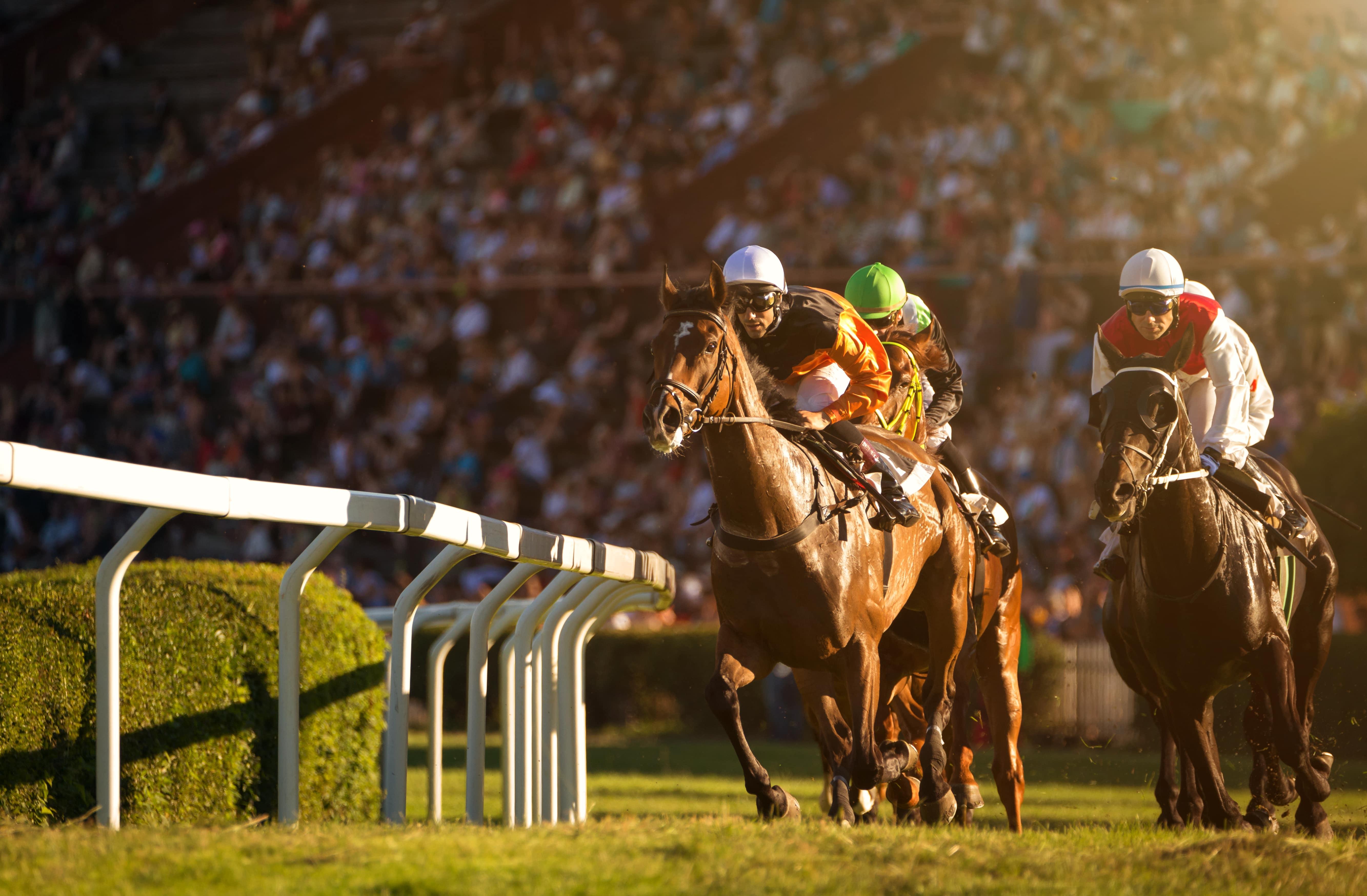 Horse racing in Berkshire