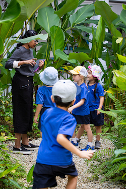 OWIS's natural classrooms encourage learning
