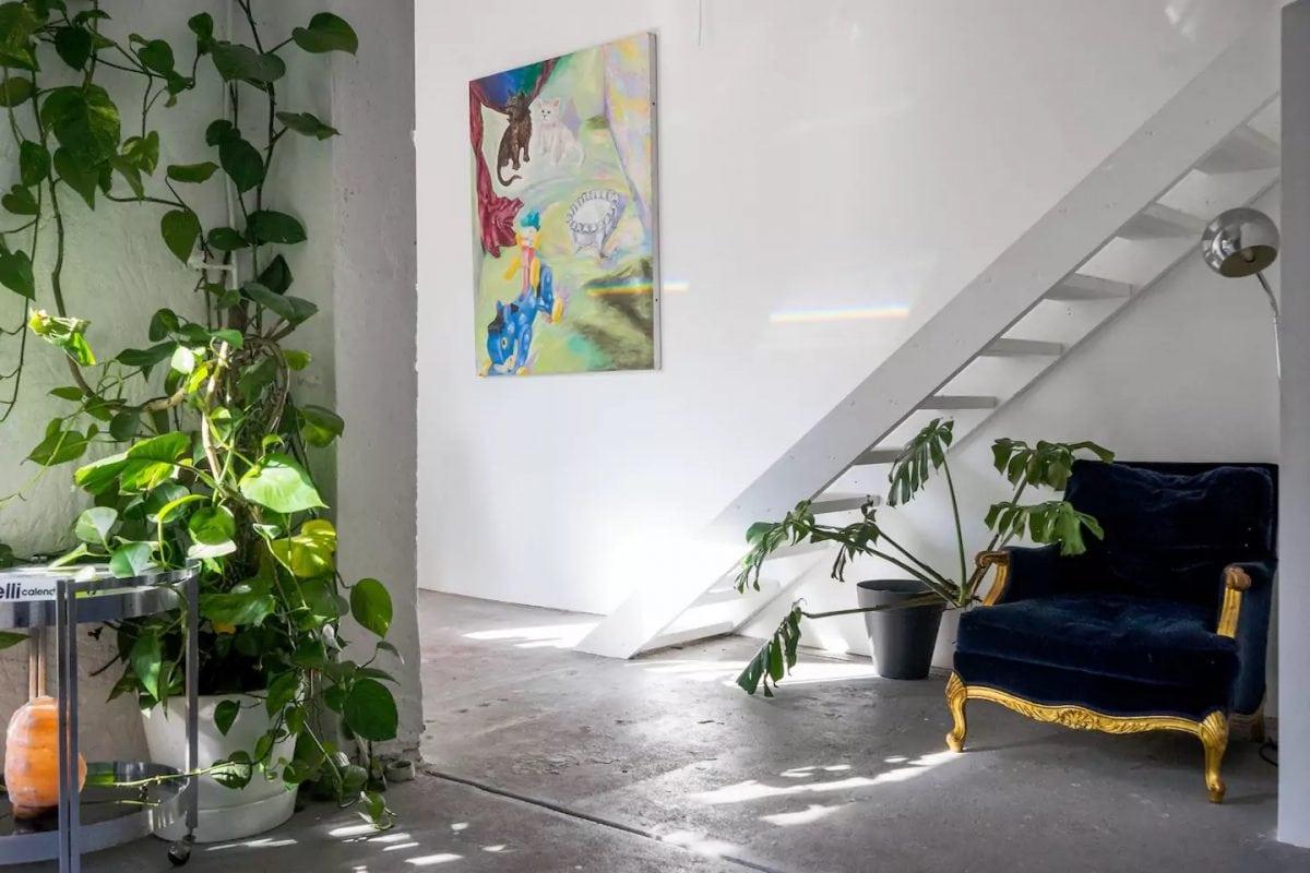Indoor Plants Spacious