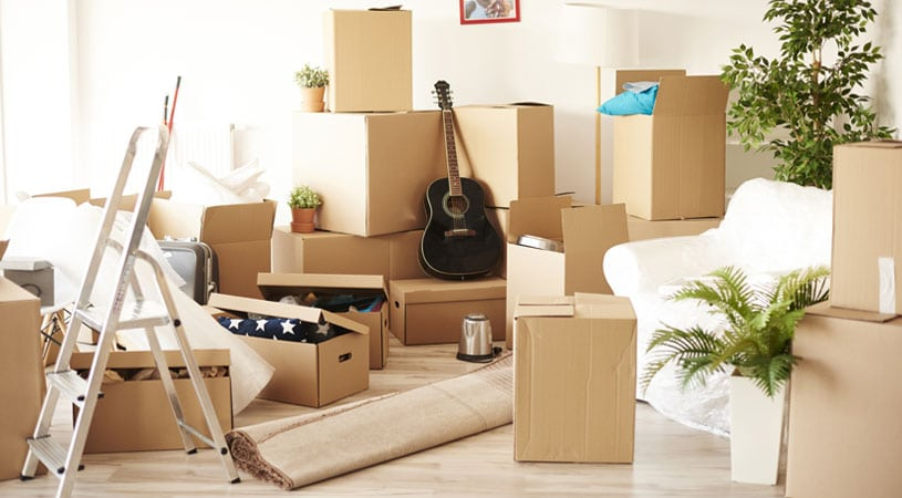 Mess Created By Cheap Removalists