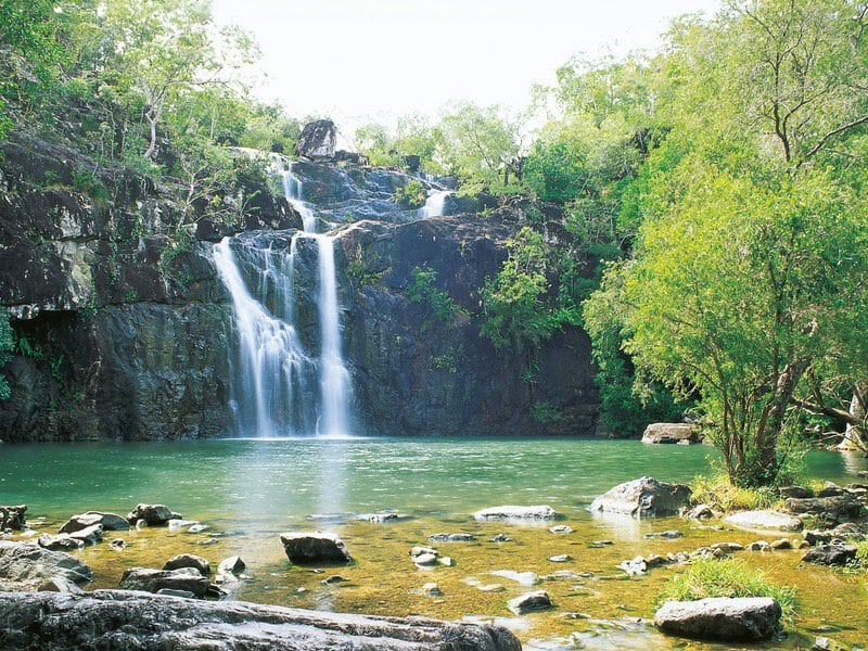 Cedar Creek Falls Brisbane Swimming Queensland Com