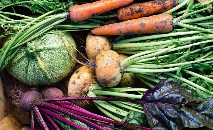 vegetables and how to make money in rural australia