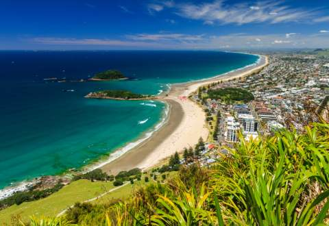 Moving from Australia to Tauranga