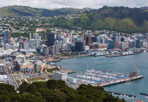 Moving from Sydney to Wellington