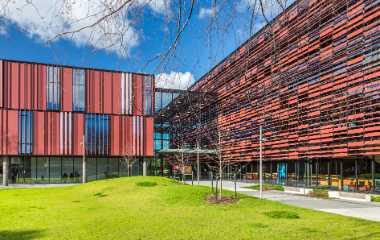 Auckland School