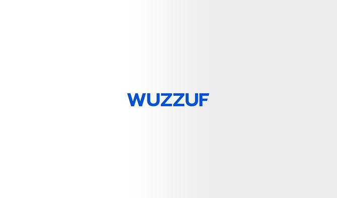 Wuzzuf startup in Egypt
