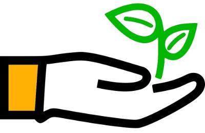Eine geöffnete Hand mit grüner Pflanze, die die Umweltfreundlichkeit der Solarenergie symbolisieren