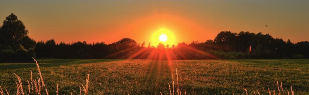 Sonne geht am Horizont über Bäumen und Wiese und symbolisiert die Solarenergie