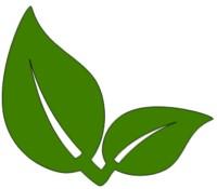Zwei grüne Blätter, die die Ökobilanz der Luft-Wasser-Wärmepumpe darstellen
